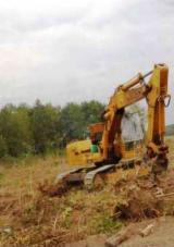 Servicii Forestiere Publicati oferta - Servicii forestiere (defrisat), drumuri forestiere