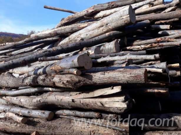 peuplier bois de chauffage id e int ressante pour la conception de meubles en bois qui inspire. Black Bedroom Furniture Sets. Home Design Ideas