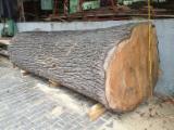 Holzbearbeitung Deutschland - Überstarke Stämme bis 150cm Durchmesser, Dynamisches Sägewerk, Lohnschnitt Bayern