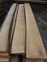 Hardwood  Unedged Timber - Flitches - Boules - Linden / Basswood