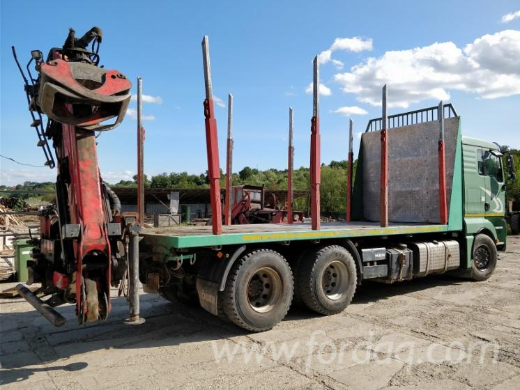 Camion-Forestier-MAN-cu-maraca-Palfinger-Epsilon