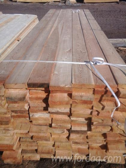 Siberian-Larch-Timber-22-50