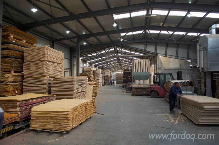 Plywood-factory-for-sale-or