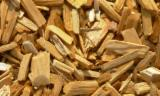 Wood Chips From Forest - Pine Wood Chips