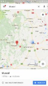 Šumsko Gazdinstvo Za Prodaju - Rumunija, Hrast