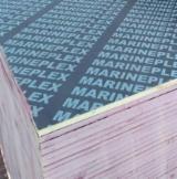 Sell And Buy Marine Plywood - Register For Free On Fordaq Network - Super Marine Plex Birch Film Faced Plywood