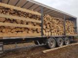 null - Beech Firewood/Woodlogs Cleaved