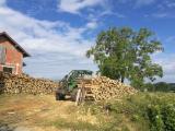 Energie- und Feuerholz - Robinie Brennholz Gespalten