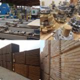 B2B WPC Terrassenböden Zu Verkaufen - Kaufen Und Verkaufen Auf Fordaq - Kiefer  - Föhre, Belag (4 Abgestumpfte Kanten)