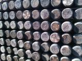 Softwood  Logs - Pine Stakes / Poles 5-16 cm