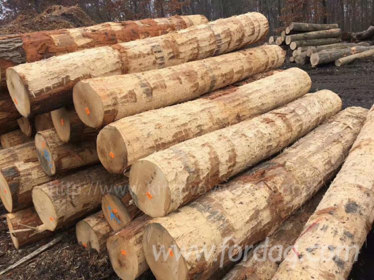 Red-Oak-Debarked-Logs