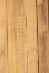 Estonia - Fordaq Online market - Black Alder Planks 19;32 mm
