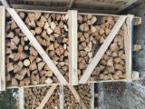 Buche Brennholz Gespalten