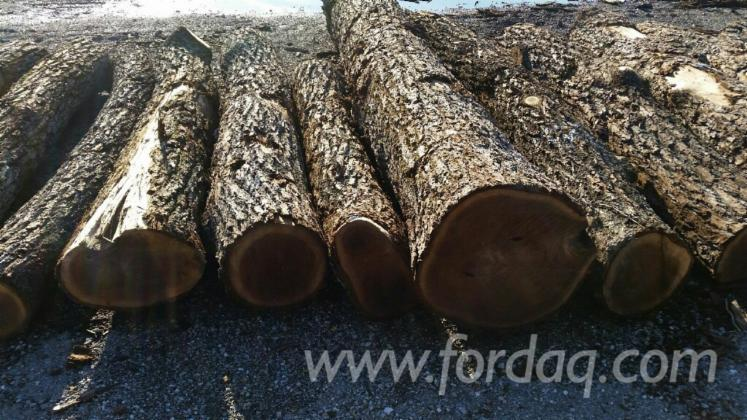 Red-Oak---Walnut---Hard-Maple-Logs-for