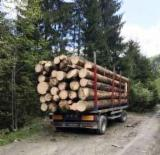 Oprema Za Šumu I Žetvu Prikolica S Pokretnim Podom - Prikolica S Pokretnim Podom -- Polovna Rumunija