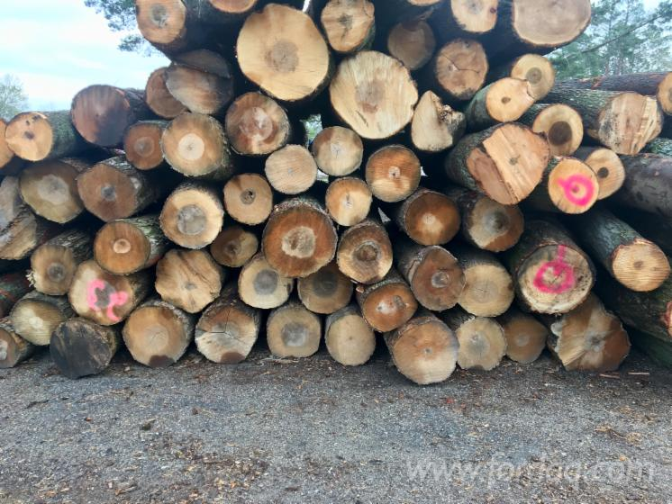 Red-Oak-Logs