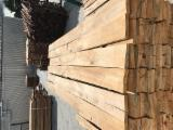 Sawn And Structural Timber Poland - Beech Planks 26/32 mm