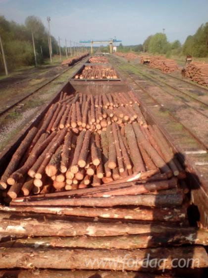 Pine-Pulpwood-Logs-8-40