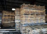 Laubholz  Blockware, Unbesäumtes Holz Zu Verkaufen Frankreich - Loseware, Buche