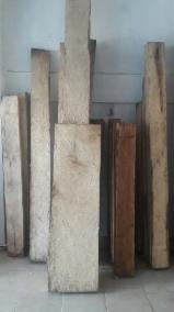 Stehendes Holz - Mexiko