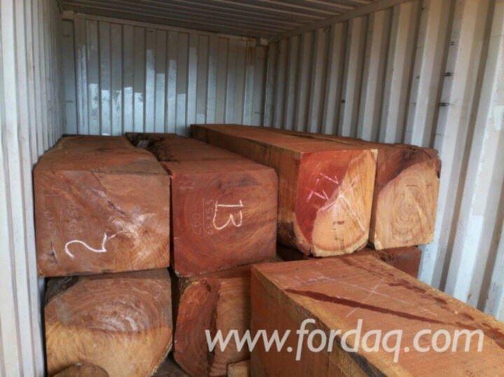 Doussie-Square-Logs-35-