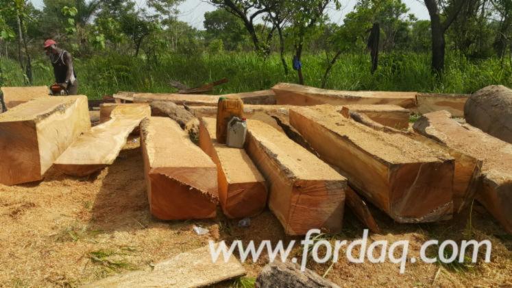 Square-Logs