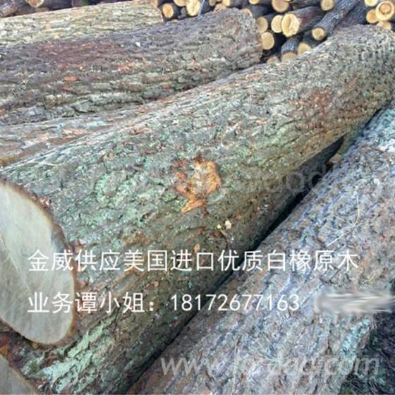 White-Oak-Logs-2SC