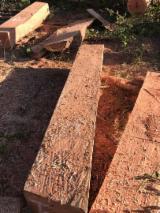 林地  - Fordaq 在线 市場 - 纳米比亚, 毛帽柱木