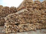 劈好的薪柴-未劈的薪柴 薪碳材/开裂原木 榉木