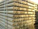 Greece Softwood Logs - Pine Impregnated Palisades
