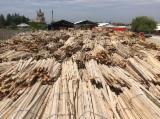 Firewood, Pellets And Residues - Beech Off-Cuts/Edgings -- mm