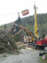 Servicios Y Empleo - Producción Cosecha Forestal