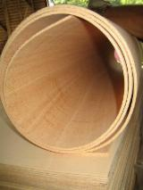 Wood for sale - Register on Fordaq to see wood offers - Ceiba Bending Plywood 5;7;9;16 mm