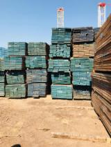 United Arab Emirates - Fordaq Online market - AD Iroko Sawn Timber, 50 mm thick
