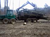 森林和收成设备 - Forwarder Timberjack 1710 旧 1998 波兰