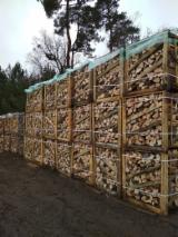Leña, Pellets Y Residuos en venta - Venta Leña/Leños Troceados Haya Polonia