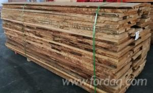 Beech-Loose-Timber-16-80