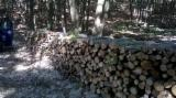 Firewood/Woodlogs Not Cleaved - Hornbeam, Beech, Birch Firewood/Woodlogs Not Cleaved