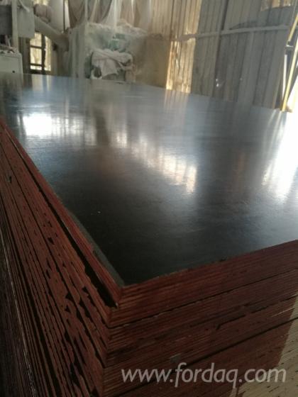 Film-Faced-Eucalyptus-Plywood-for-Concrete