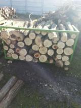 Firewood, Pellets And Residues - Acacia Firewood/Woodlogs Not Cleaved -- mm