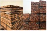 阿联酋 - Fordaq 在线 市場 - 整边材, 腺状纽敦豆木