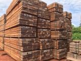 Basralocus Hardwood Logs - Angelim Pedra / Basralocus / Sucupira Preta Logs 60-150 cm