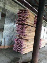 Find best timber supplies on Fordaq - Ispas LLC - Beech Planks, 32; 42; 52 mm thick