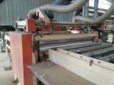 Masini Si Utilaje Pentru Prelucrarea Lemnului - Vand Utilaj Pentru Producția De Panouri Shanghai Second Hand China
