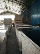 Film Faced Shuttering Plywood, 9-20 mm thick
