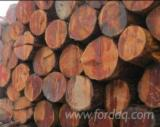 Korea, South - Fordaq Online market - Buying Douglas Fir Saw Logs, 30-60 cm Diameter