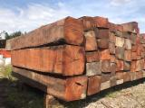 Forest And Logs Vietnam - Cambodian Ironwood Square Logs A/B