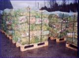 哈萨克斯坦 - Fordaq 在线 市場 - 劈好的薪柴-未劈的薪柴 薪碳材/未开裂原木 桦木