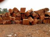 森林和原木 非洲  - 方形木材, 缅茄(苏)木