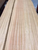 Trgovina Na Veliko Drvnim Listovi Furnira - Kompozitni Paneli Furnira - Prirodni Furnir, Fuma , Prva I Zadnja Daska